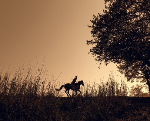 Horse riding Lincolnshire